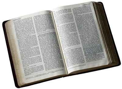 estudo biblico sobre roboão