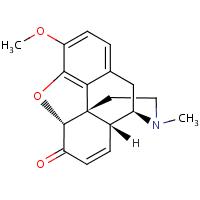 codeinone (wrong)