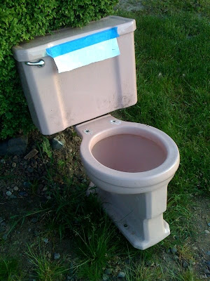 Pink toilet!