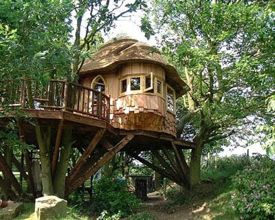 Home Design on House Designs At Housephoenix  Tree House Plans