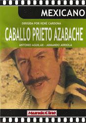 Caballo Prieto Azabache (con Flor Silvestre)
