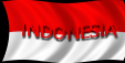 INDONESIAN LANGUAGE