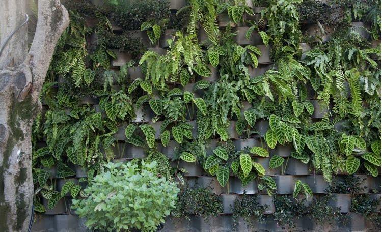 fotos jardim horizontal : fotos jardim horizontal:Via UOL – jardins da casa cor SP/ 2010