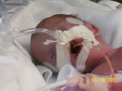 Kaleigh 1-18-08