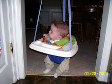 Braden in door jumper