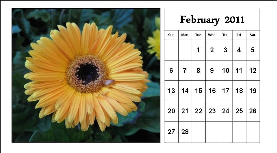 justin bieber 2011 calendar february