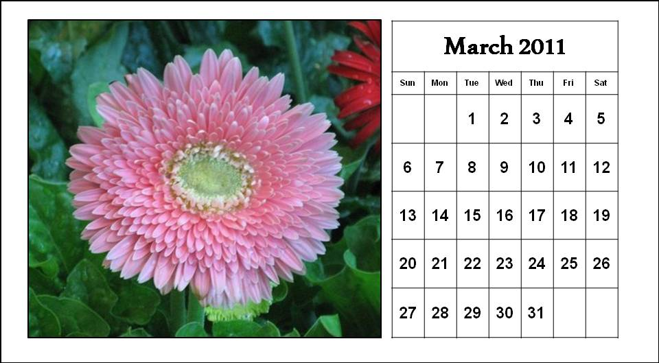 2011 Calendar Template Word. 2011 MARCH CALENDAR TEMPLATE