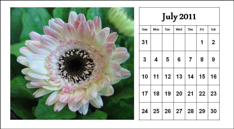 To download and print this Free Monthly Calendar 2011 July with flowers