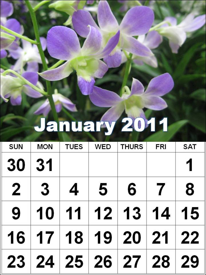 Calendars January 2011 to December 2011 - Horizontal