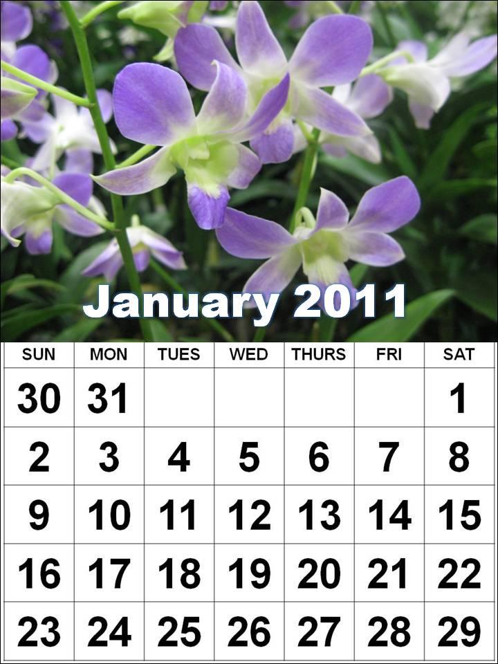 Calendars January 2011 to December 2011 - Horizontal