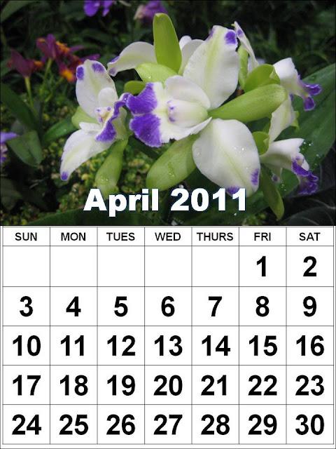 2011 calendar template microsoft. 2011 calendar template microsoft. 2011 calendar template