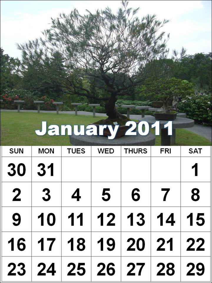 2011 calendar printable january. January 2010 calendar