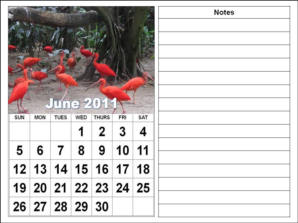 june 2011 calendar printable. 2011 calendar may june. may