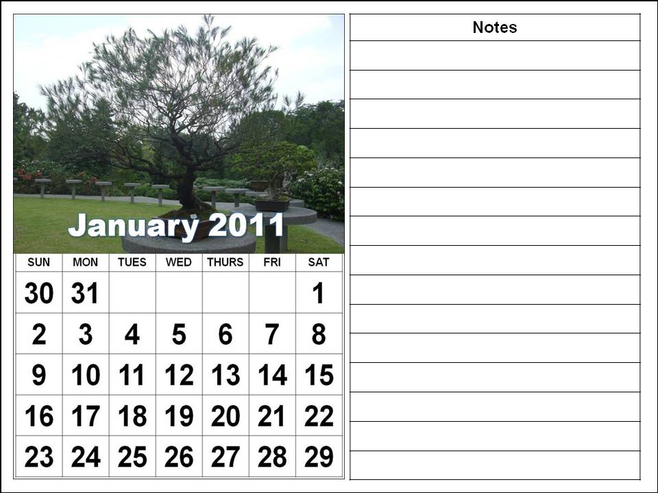 Bonzai and Cactus Plants Calendars Jan to Dec 2011 - Vertical
