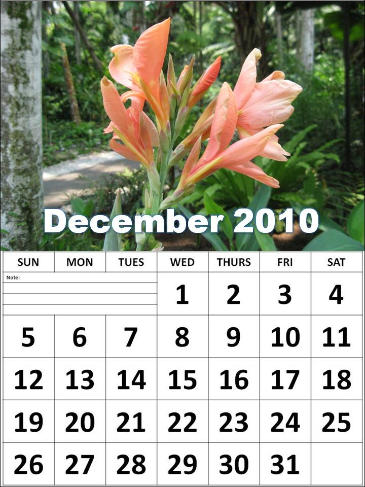 2010 monthly calendar printable. Free Printable Calendar 2010