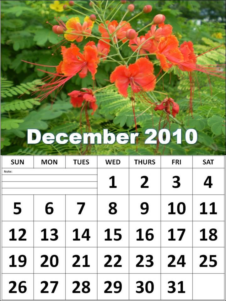 calendar template 2010. 2011 daily calendar template.