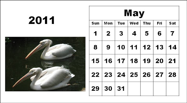 calendars 2011 may. calendar 2011 may.