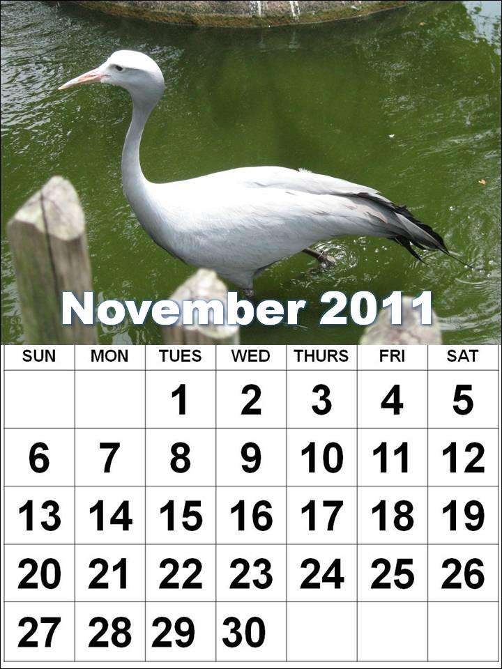 monthly calendar 2011 template. Big Monthly Calendar 2011