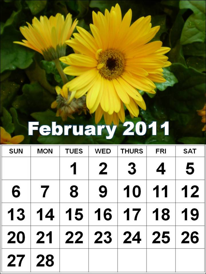 justin bieber 2011 calendar february. Justin Bieber 2011 Calendar
