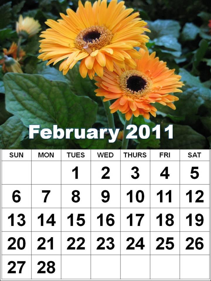 2011 calendar february. February 2011 Calendar