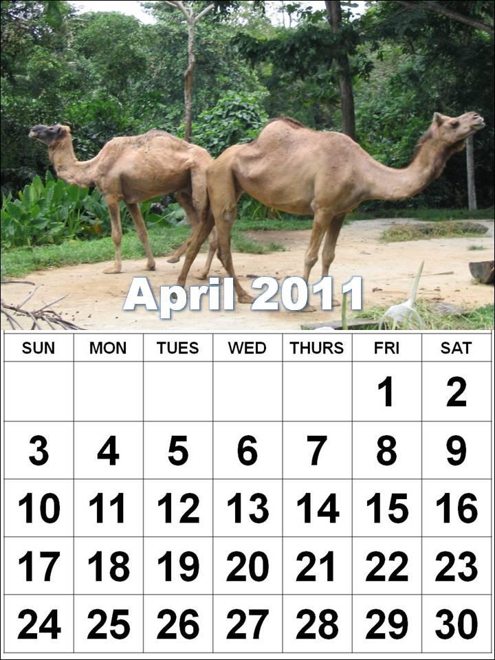 2011 calendar may june. 2011 calendar april may june. april may june july august; april may june july august. ~Shard~. Jul 14, 03:57 PM