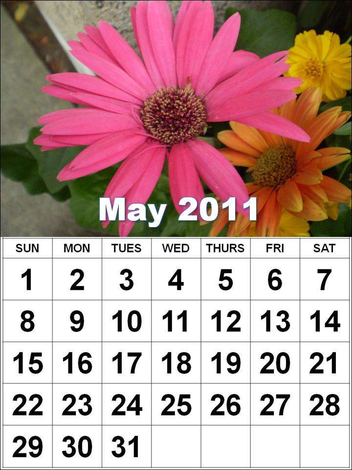 calendar may 2011 canada. wallpaper may 2011 calendar