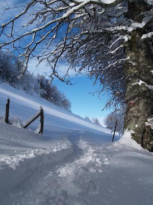 Monte Aquilone