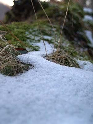 Fosso del Becca: geometrie ghiacciate