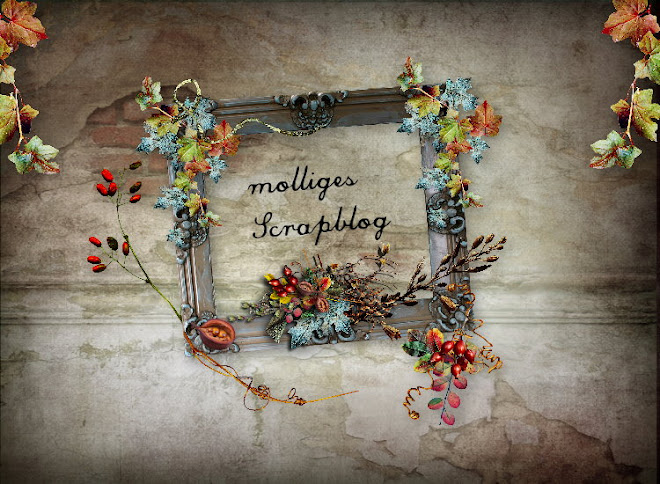 molliges Blog