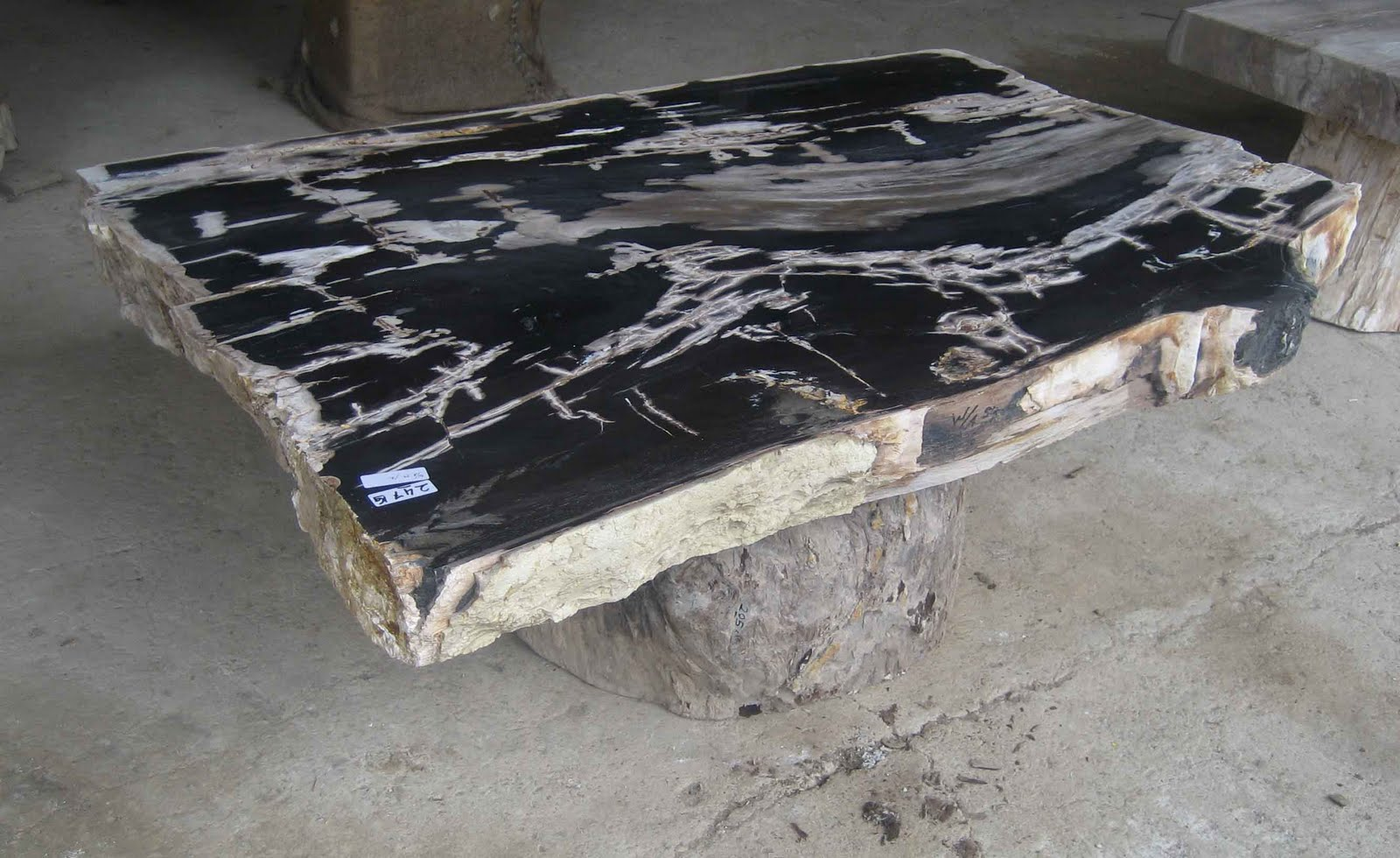 PETRIFIED WOOD TABLE TOP