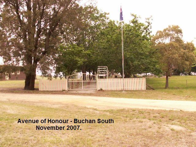 Buchan South Avenue of Honour