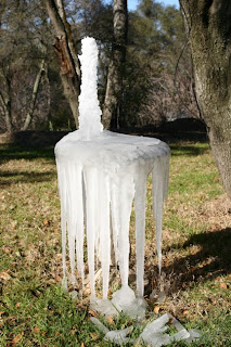 Bird Bath Ice Sculpture #1