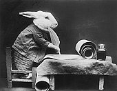 [Bunny+Note]