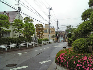 after rain in funabashi