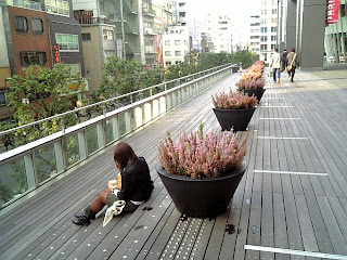 wood deck of akiba bridge