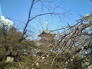 five storied pagoda from penoy garden