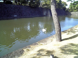a moat of former Edo castle