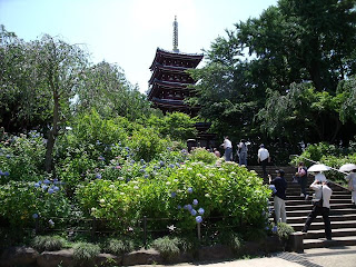 five-storied pagoda in hondoji temple