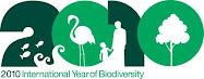 UN Biodiversity Logo