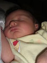 Sidney Malee