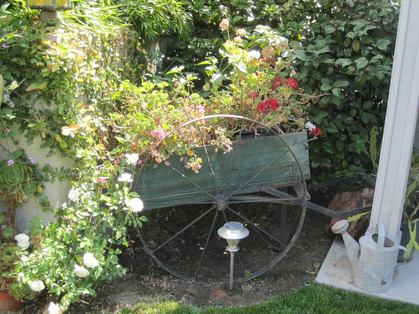 Our Secret Garden - GoExploreNature.com
