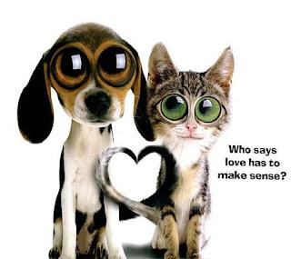 love is fallacy max shulman