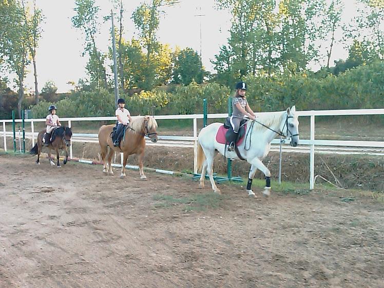 Os nossos Ponys