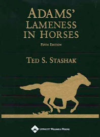 Adam´s Lameness In Horses written by Ted S. Stashak