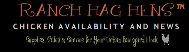 Chicken Availability and News from Ranch Hag Hens, Petaluma CA
