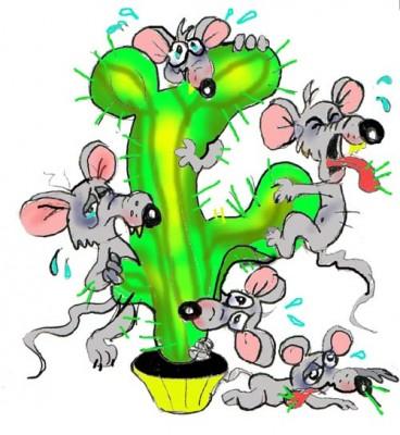 Мыши плакали, кололись, но продолжали есть кактус...