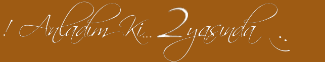 http://1.bp.blogspot.com/_vUCEv3WrlVw/THOmAlKxLvI/AAAAAAAAGRA/zUnHFNOGyfE/s1600/Anladim+ki+anlamak+yetmiyor+2+yasinda.png