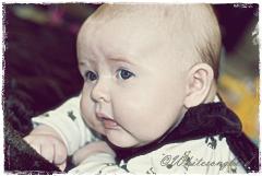 Min Lille Prins