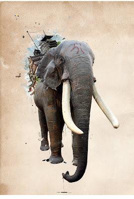 Elefántra festett kép
