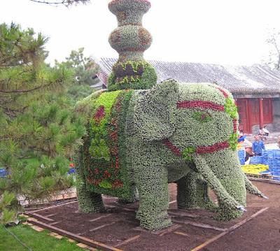 Elefántok virágból